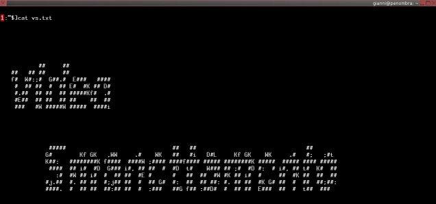 Videosmanettamento: corsi per utilizzare il terminale