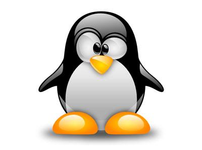 Linux vale un miliardo di dollari