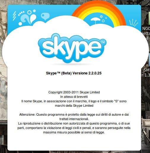 skype2-2