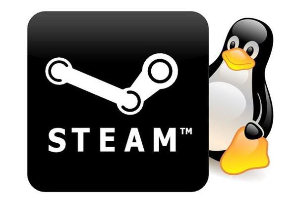 steam-linux(599x411)