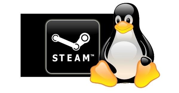 steam_b_6029