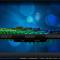 Rilasciato XBMC 13.0 Beta 1: novità e download