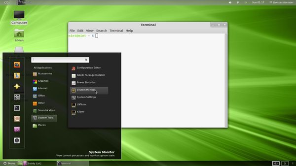 custom-mint-desktop