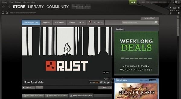 Steam-Client